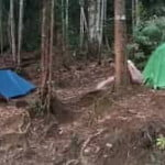 Lata Naning Campsite