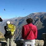 TOUR COLCA CANYON AND CLIMB TO MOUNT CHACHANI