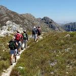 Perdekop Trail, Mont Rochelle Nature Reserve