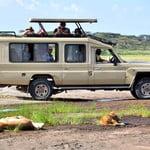 Tanzania safari deals, discount tour offers and budget camping safaris