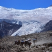 Aconcagua Expedition by Normal Route