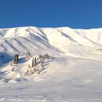 Apharwat peak (4 200 m / 13 780 ft)