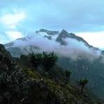 Mount Baker (4 844 m / 15 892 ft)