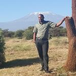 Mount Kilimanjaro view from Amboseli Sopa Lodge in Kenya