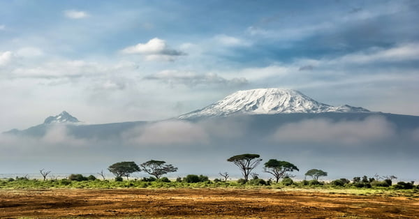 How to Choose the Right Guide for Climbing Kilimanjaro
