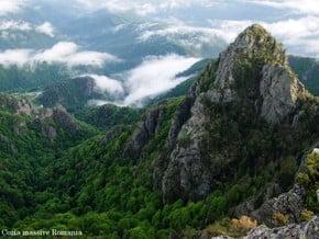 Image of Carpathian Mountains