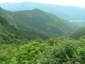 Image of Central Appalachians