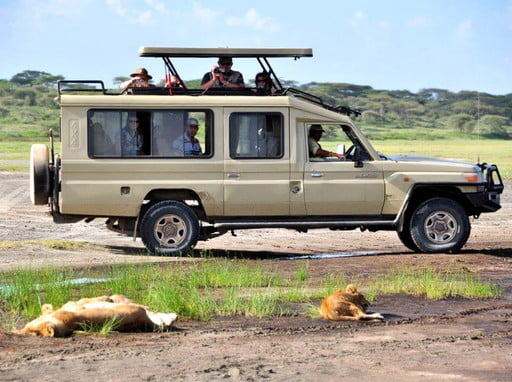 Nature-based camping safaris in Tanzania are  discount travel deals