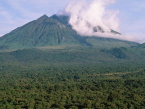 Image of Virunga Mountains