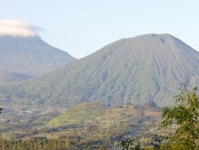 Image of Rwanda Volcanoes Trek