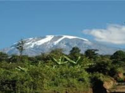 Rongai route 7 days is enjoyable and success Kilimanjaro travel deal