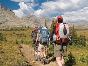 Image of Skyline Trail, North American Cordillera