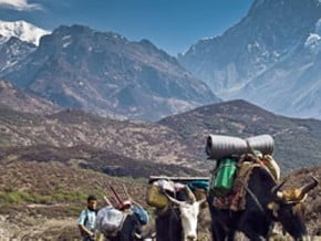 Image of Kanchenjunga Trek, Himalaya