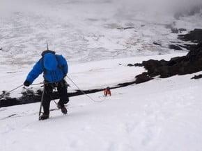 Image of North Face, Klyuchevskaya Sopka (4 835 m / 15 863 ft)