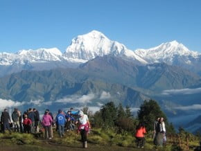Image of Poon Hill Trek, Annapurna (8 091 m / 26 545 ft)