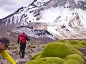 Image of South West Ridge, Nevado Sajama (6 542 m / 21 463 ft)