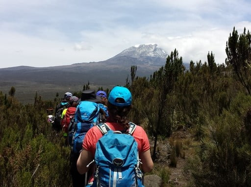 Summit climbing Mount Kilimanjaro Rongai route full supported