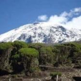 Mt. Kilimanjaro Adventures
