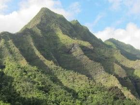 Image of Mount Ka'ala (1 231 m / 4 039 ft)