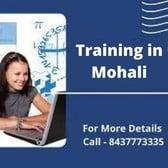 Training in Mohali Training Mohali