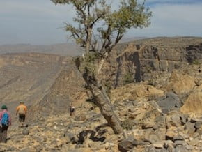 Image of Oman Adventure Trekking