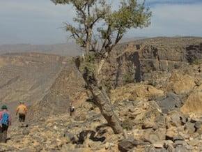 Image of Oman Adventure Trekking