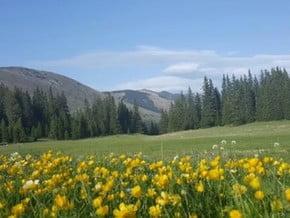 Image of Five Summits of Vranica, Čvrsnica (2 226 m / 7 303 ft)