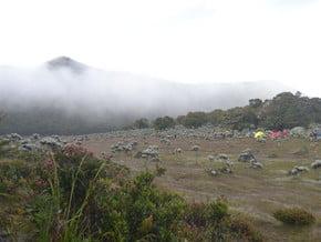 Image of Gunung Gede (2 958 m / 9 705 ft)
