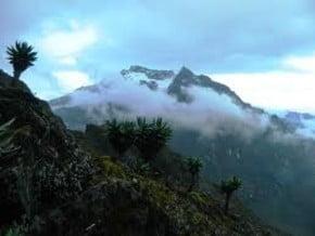 Image of Mount Baker (4 844 m / 15 892 ft)