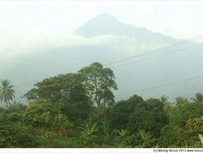 Image of Cameroon Mountains