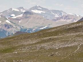 Image of Mount Ida Trail